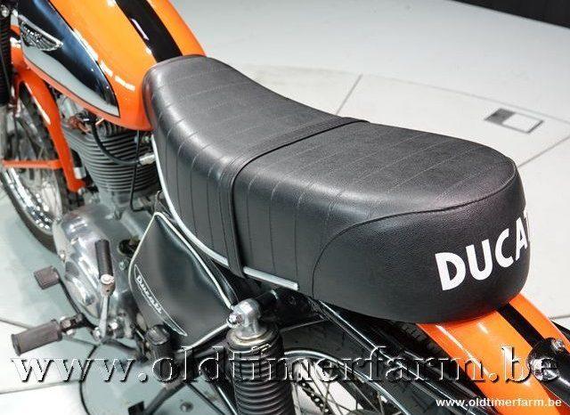 Ducati 350 Scrambler plein