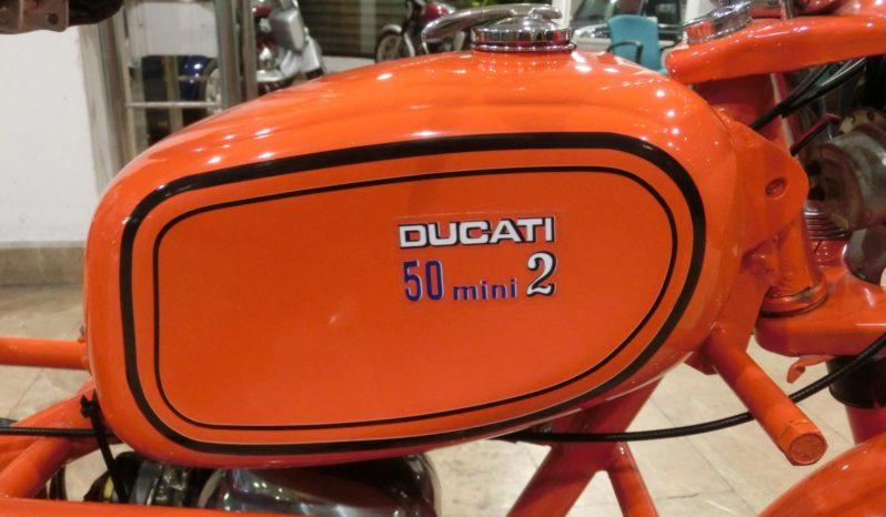 Ducati 50 Mini 2 plein