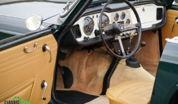 Triumph TR 4 full