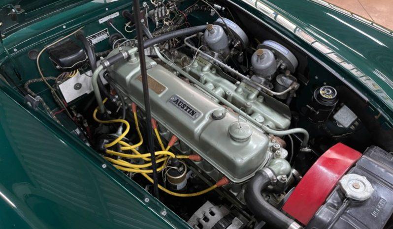 Austin Healey 3000 BT7 full